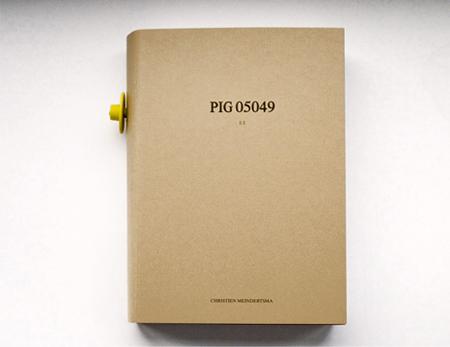 PIG05049_04